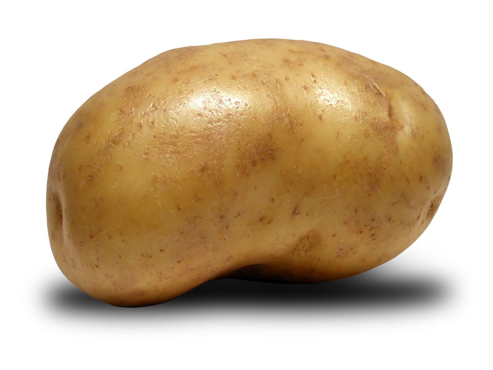 Potato-b