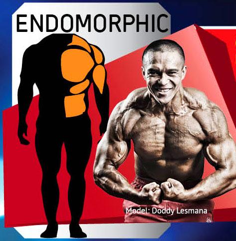Tag: Endomorph