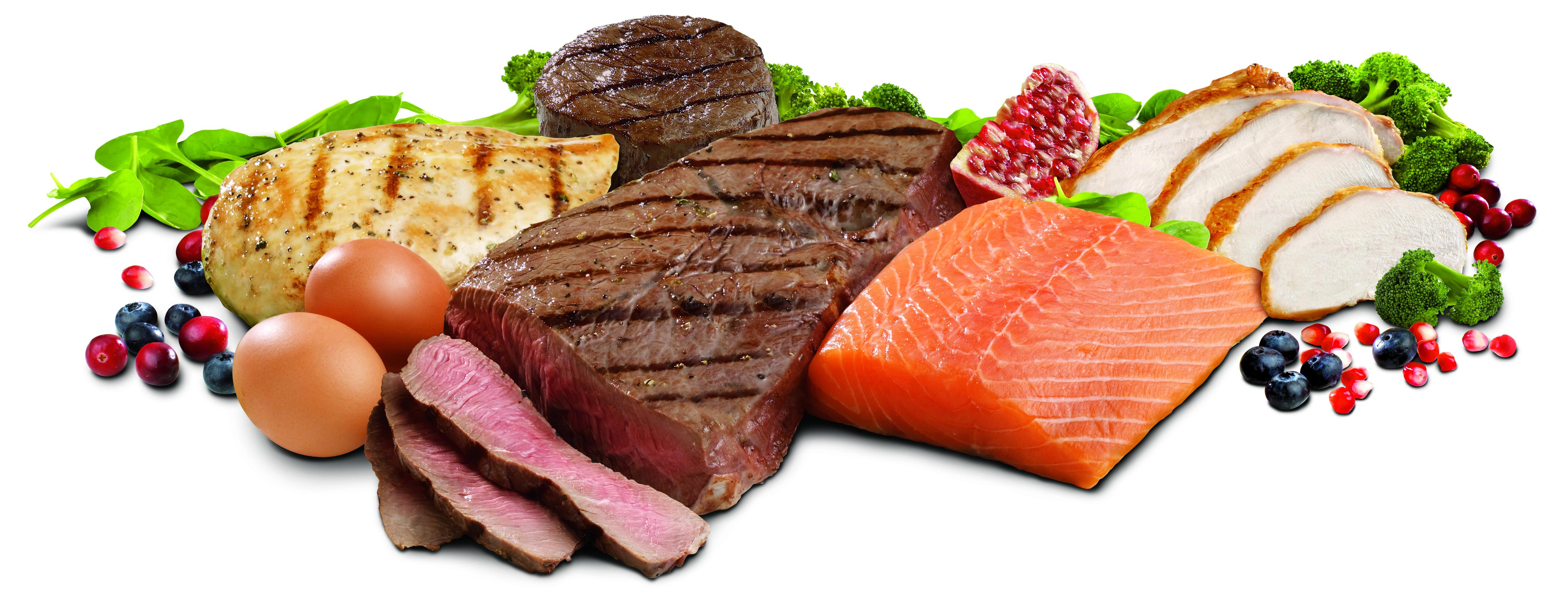 Makalah tentang Makromolekul (Karbohidrat, Protein dan Lemak)