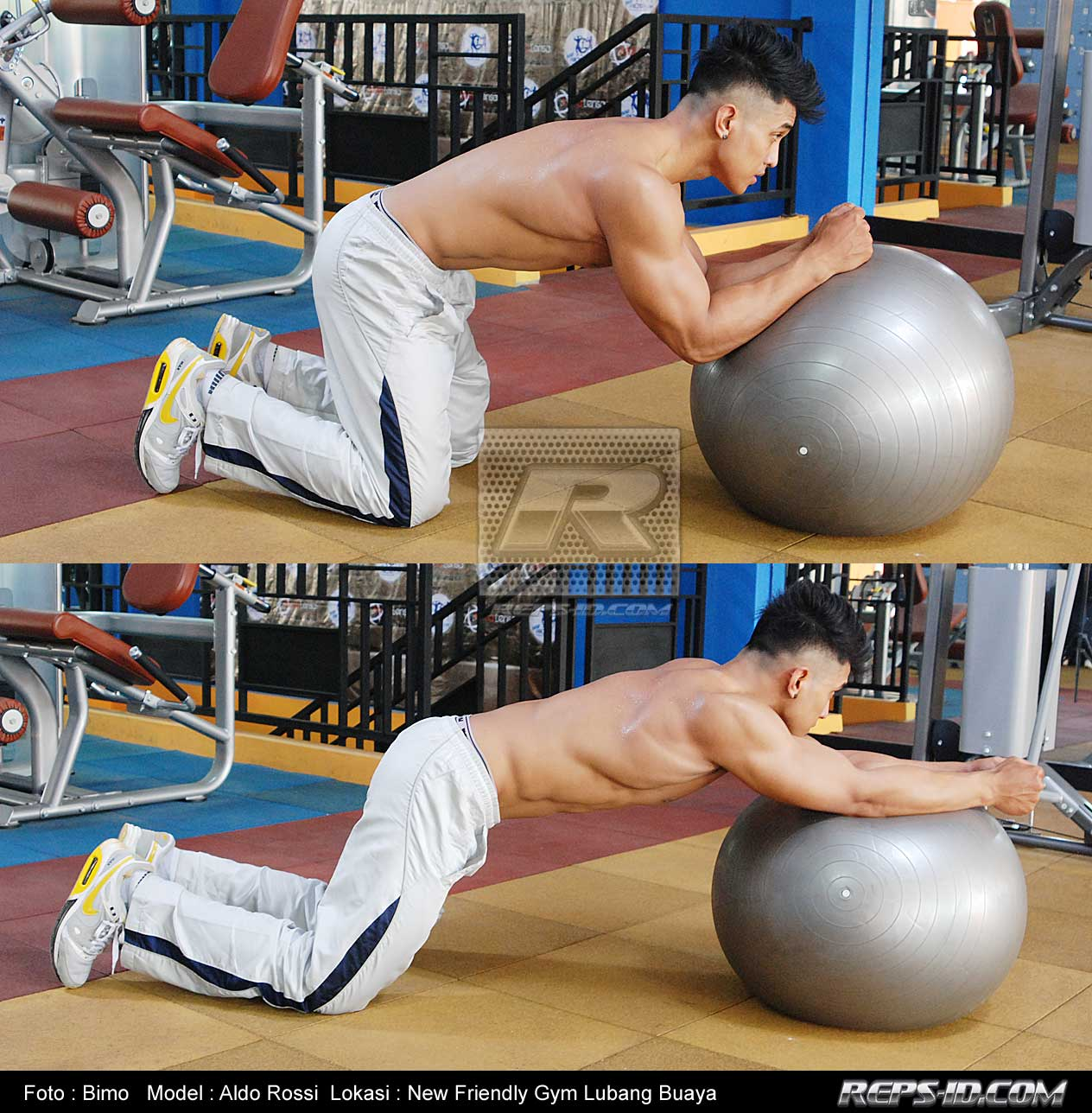 STABILY BALL KNEELING TRICEPS EXTENTION