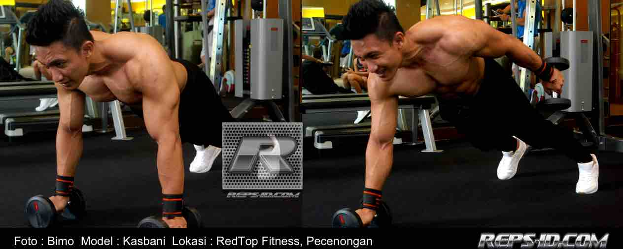 DUMBELL PLANK PULL INS