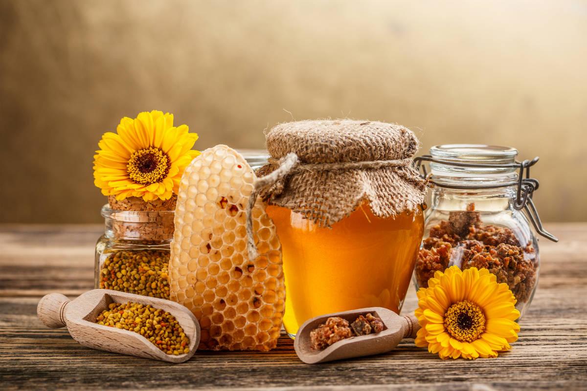 Manuka-Honey-Active-30-Benefits1