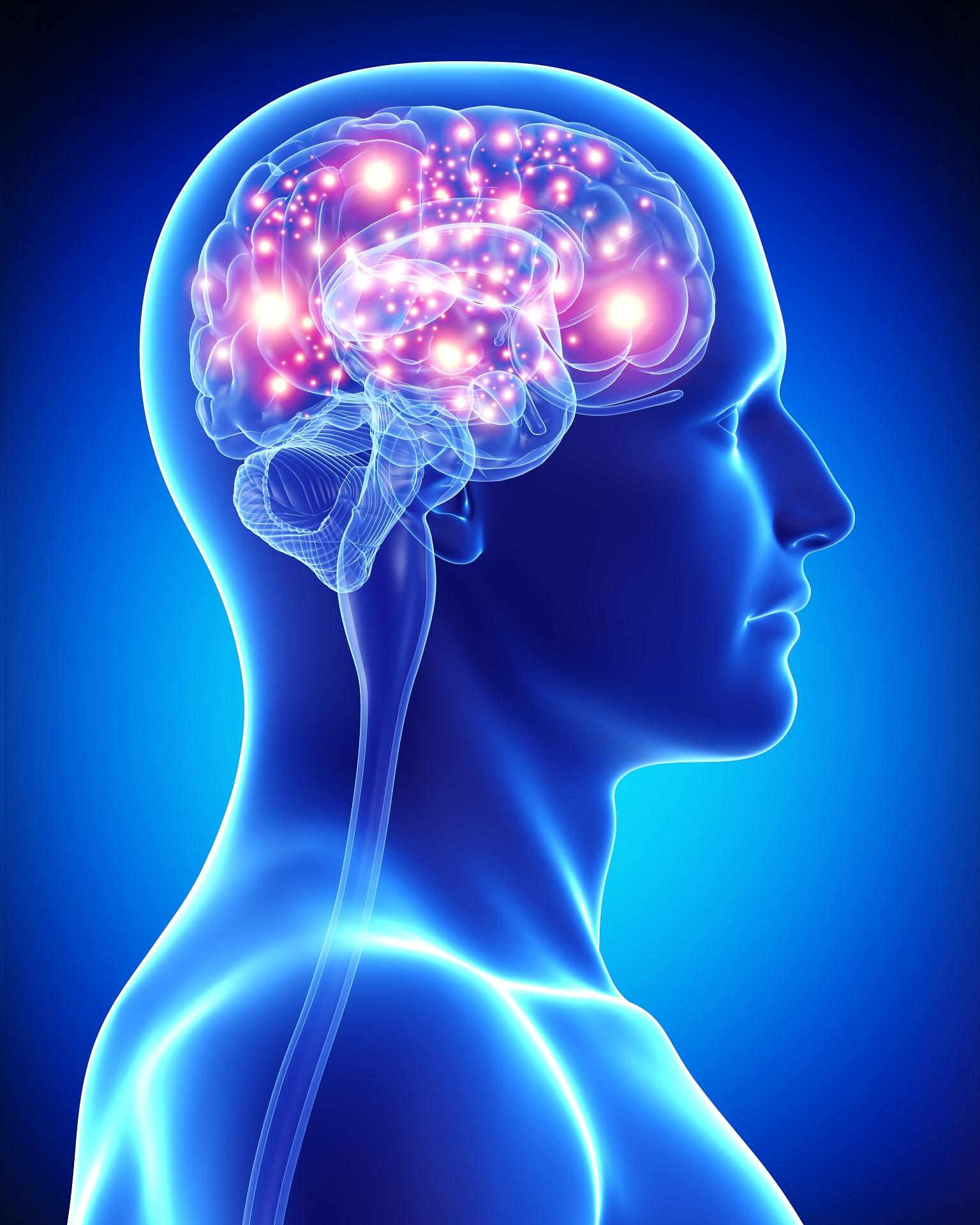 brain-health2