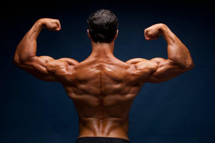 bangun otot tanpa lemak