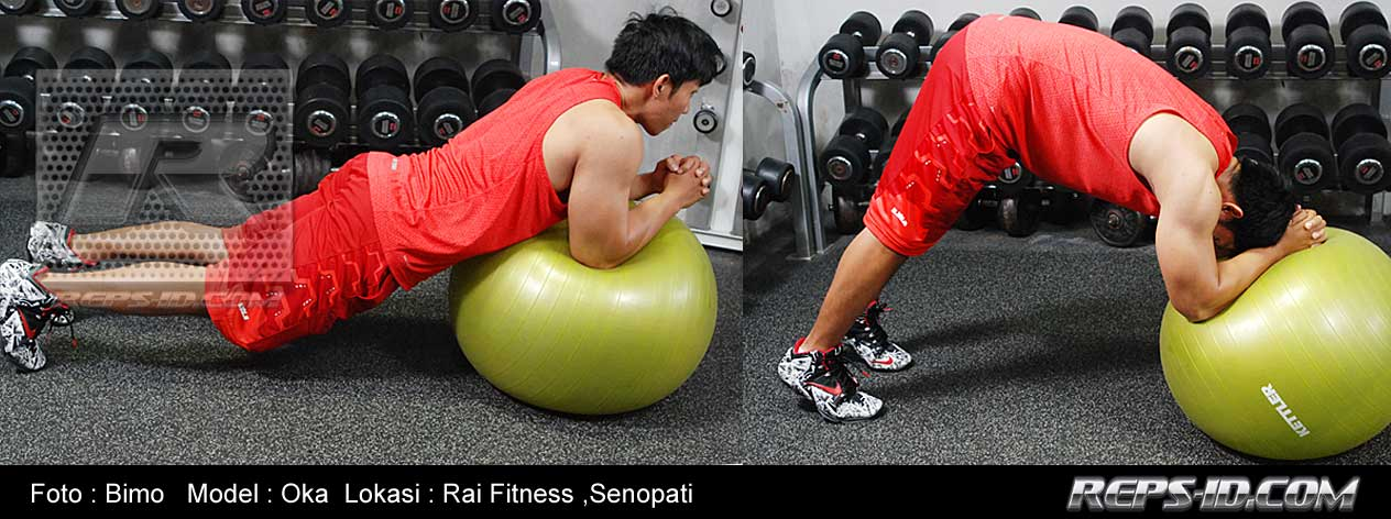 exercise-ball-rollout