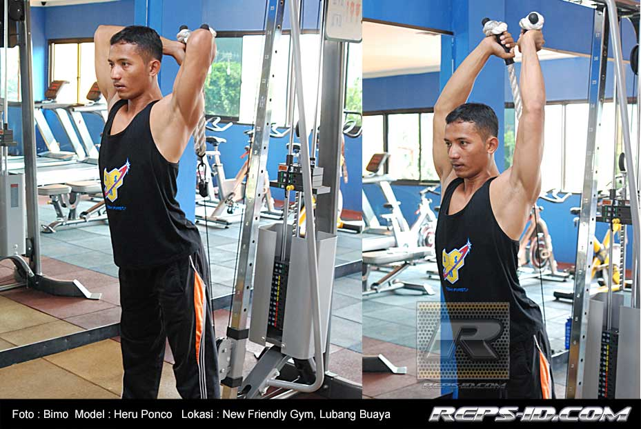 overhead-cable-tricep-extension