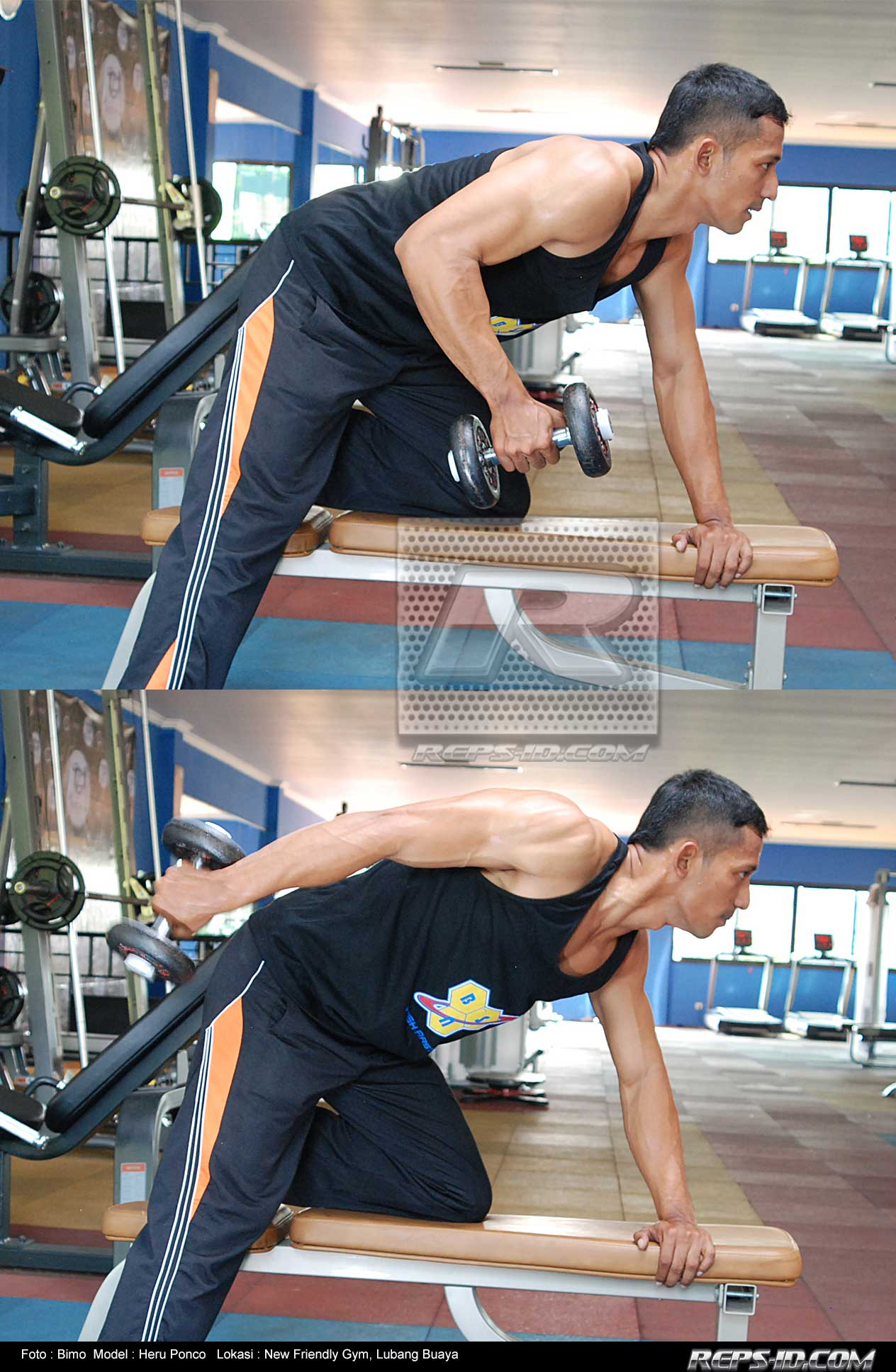 single-arm-dumbell-kick-back