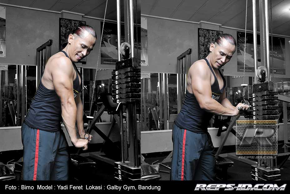 triceps-rope-pushdown2