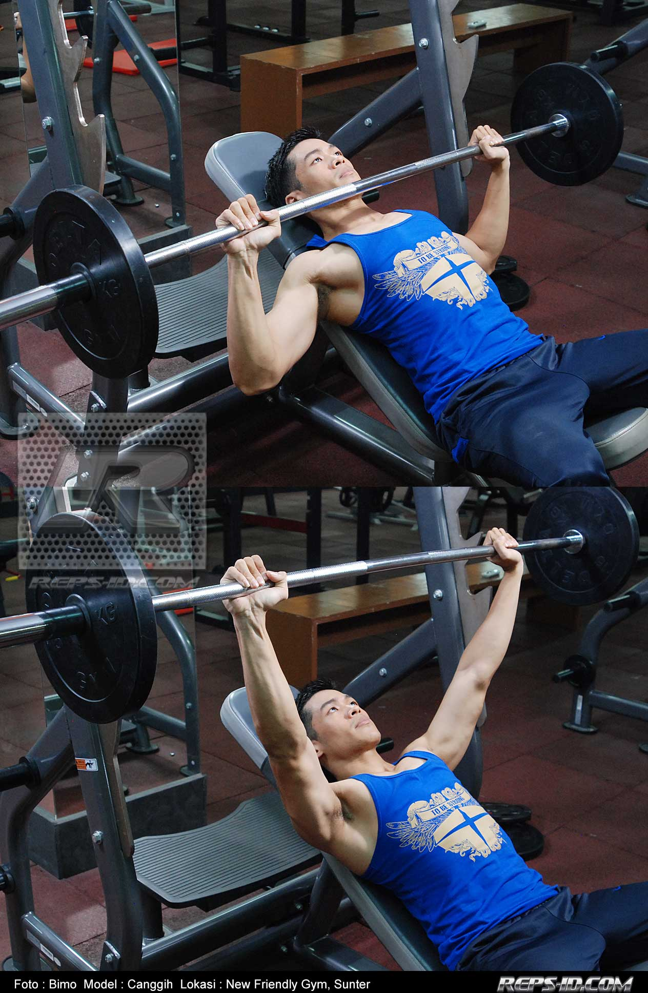 canggih--bench-press