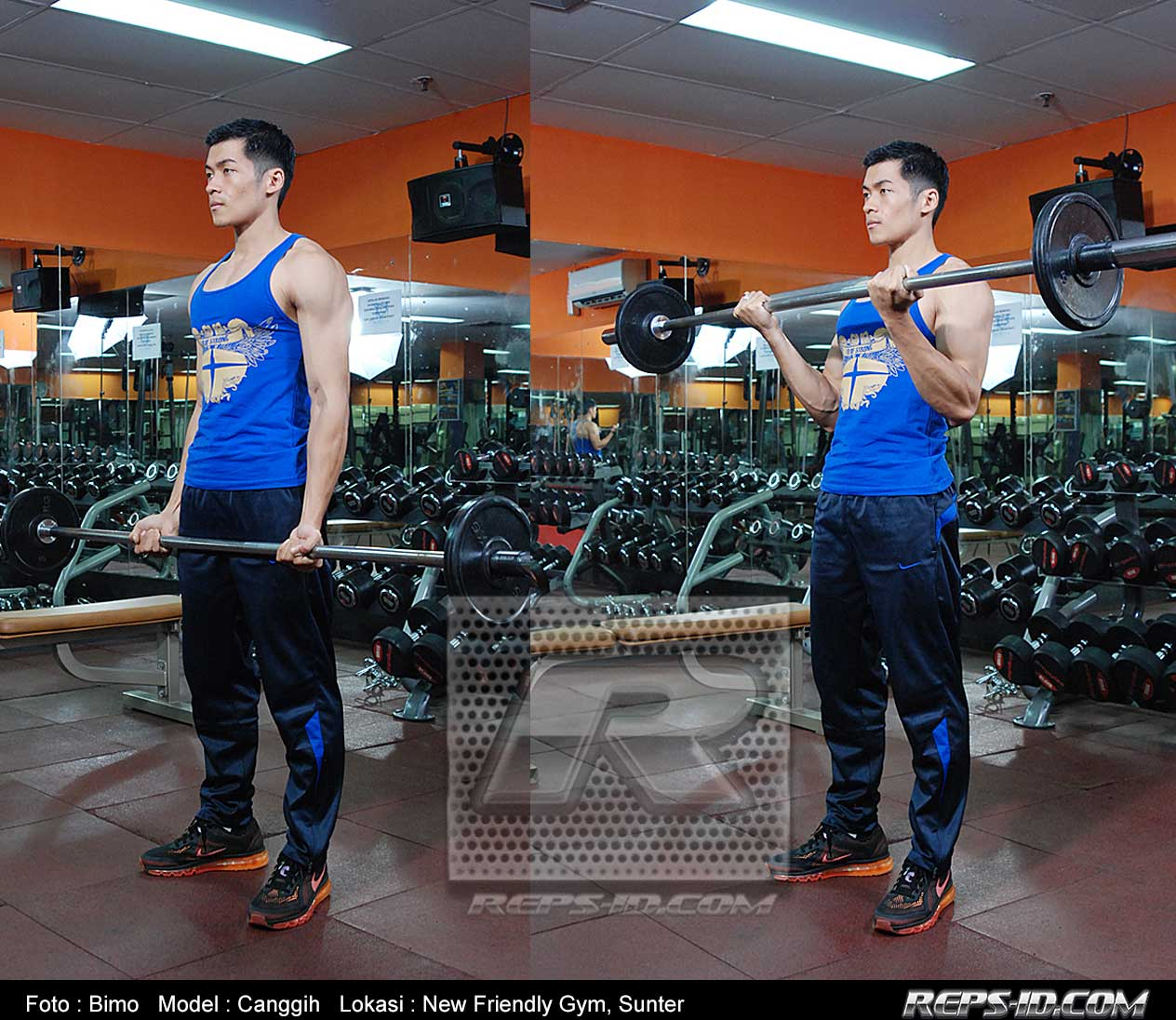 canggih--biceps-curl-bar
