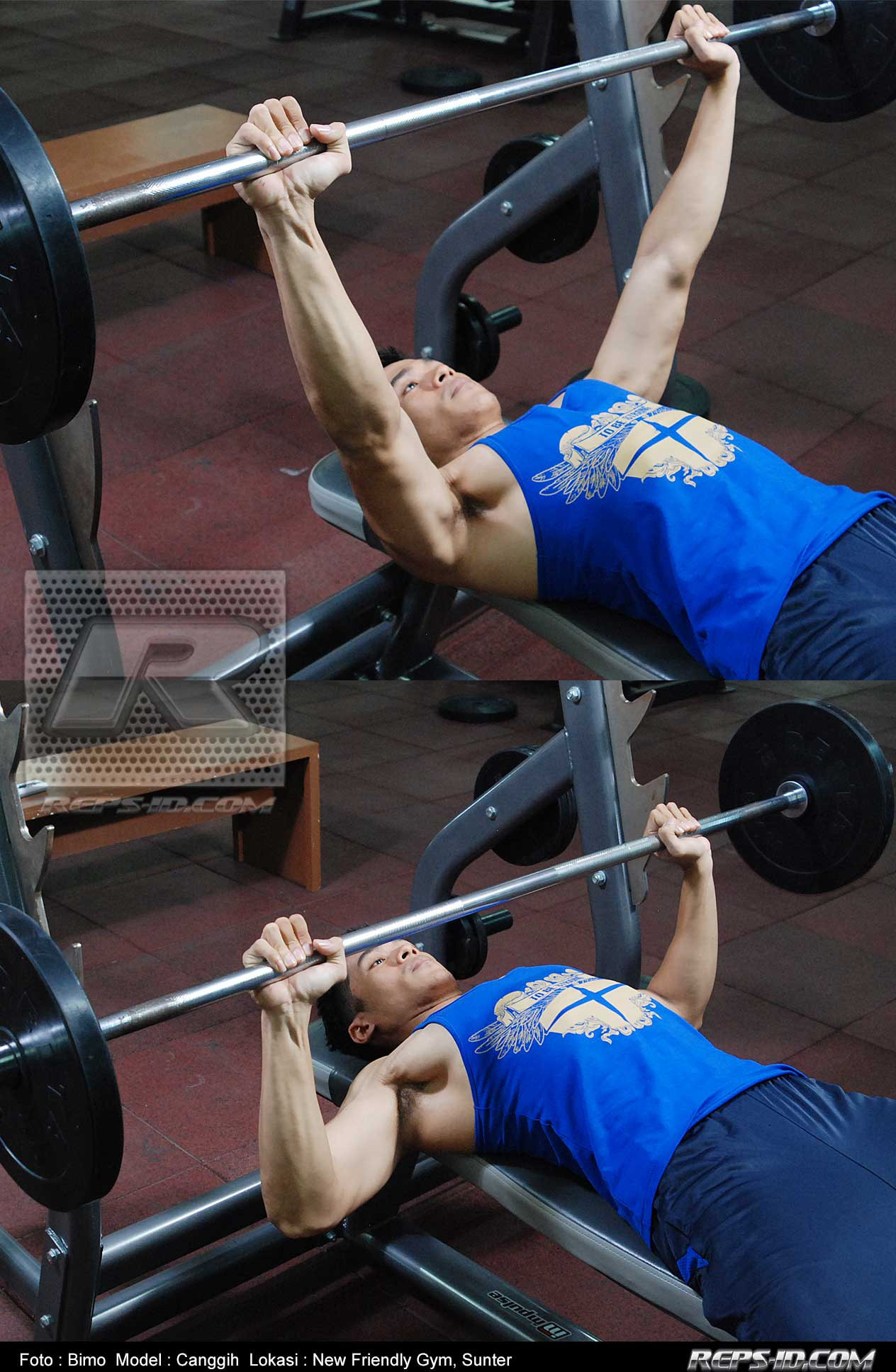 canggih--incline-press