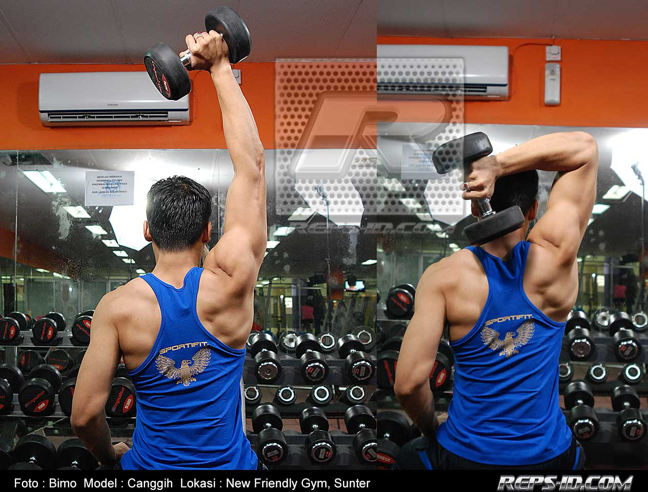 canggih--one-arm-dumbell-triceps-extention