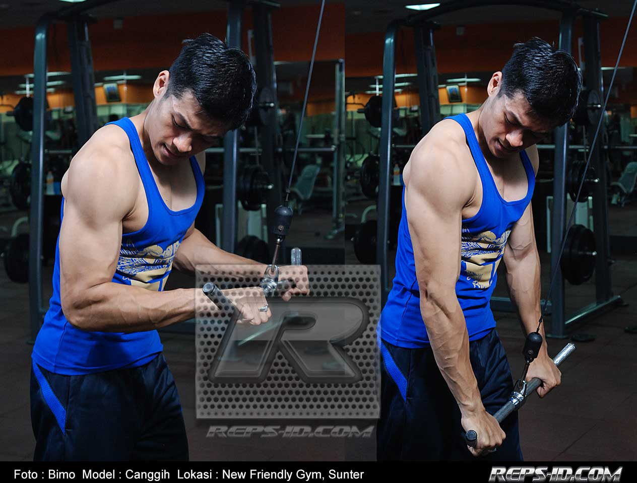 canggih-triceps-push-down
