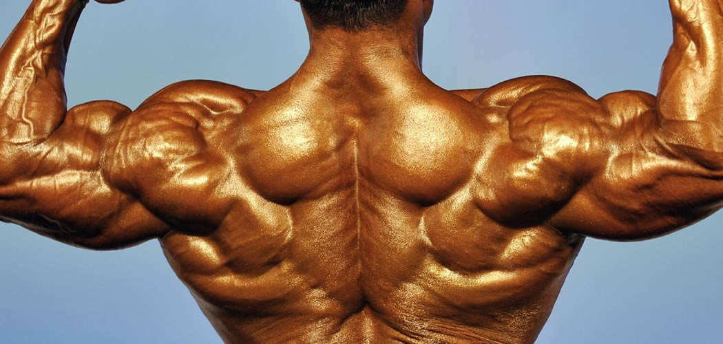 amla-bodybuilding-feature-1050x500