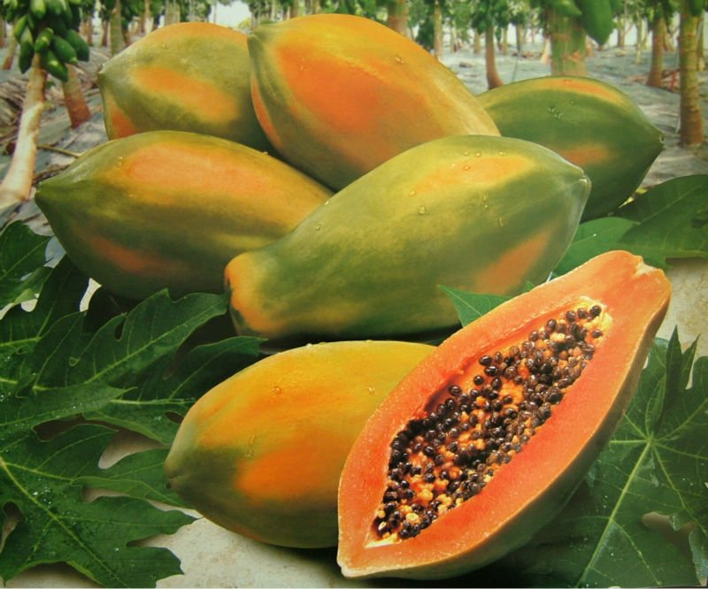 Fresh_Papaya_from_Taiwan