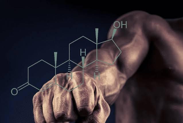 testosteron hormon penting untuk kesehatan tubuh